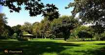 پارک لاله یک پارک قدیمی در تهران
