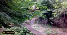 Kashpel Park